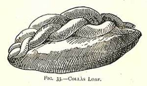 "Frederick Vine illustration for ""Colla"""
